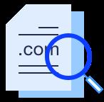 WHOIS 域名信息查询